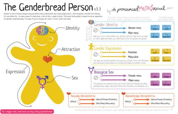 genderbread-person-3-3
