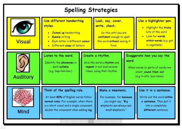 literacy-focus-spelling-strategies